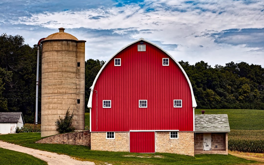 Options for Building a Dream Barn House