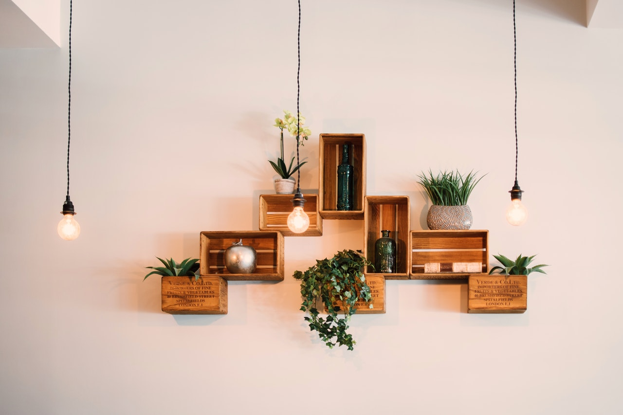 Floating wall shelves with plants